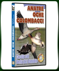 ANATRE OCHE COLOMBACCI