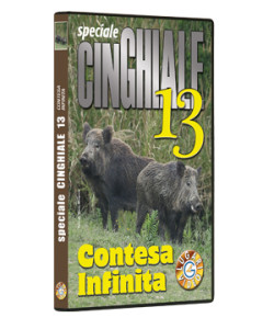 Speciale CINGHIALE 13