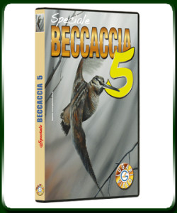 Speciale Beccaccia 5