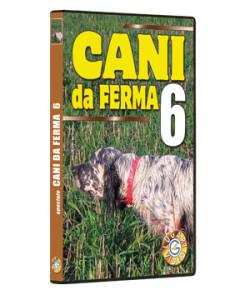 Cani da Ferma 6