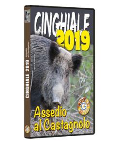 Cinghiale 2019