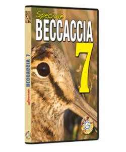 Speciale Beccaccia 7
