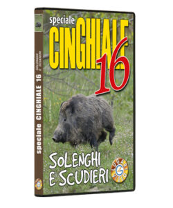 Speciale Cinghiale 16